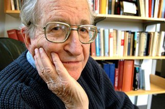 Noam Chomsky on Institutional Stupidity