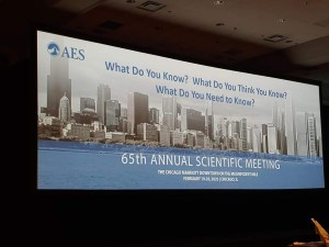 AES and The Chicago Midwinter 2020 2