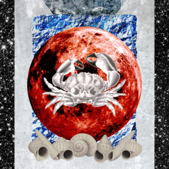 MM_ZODIAC_SIGN_CARDS