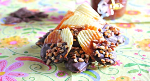Chocolate Covered Potato Chips Delux