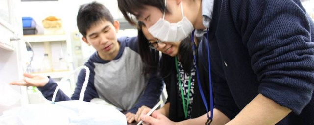 Summer Research Program in Tsukuba