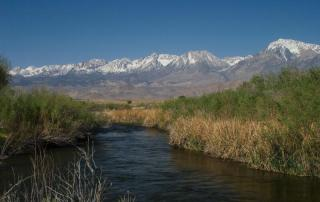 Lower Owens River