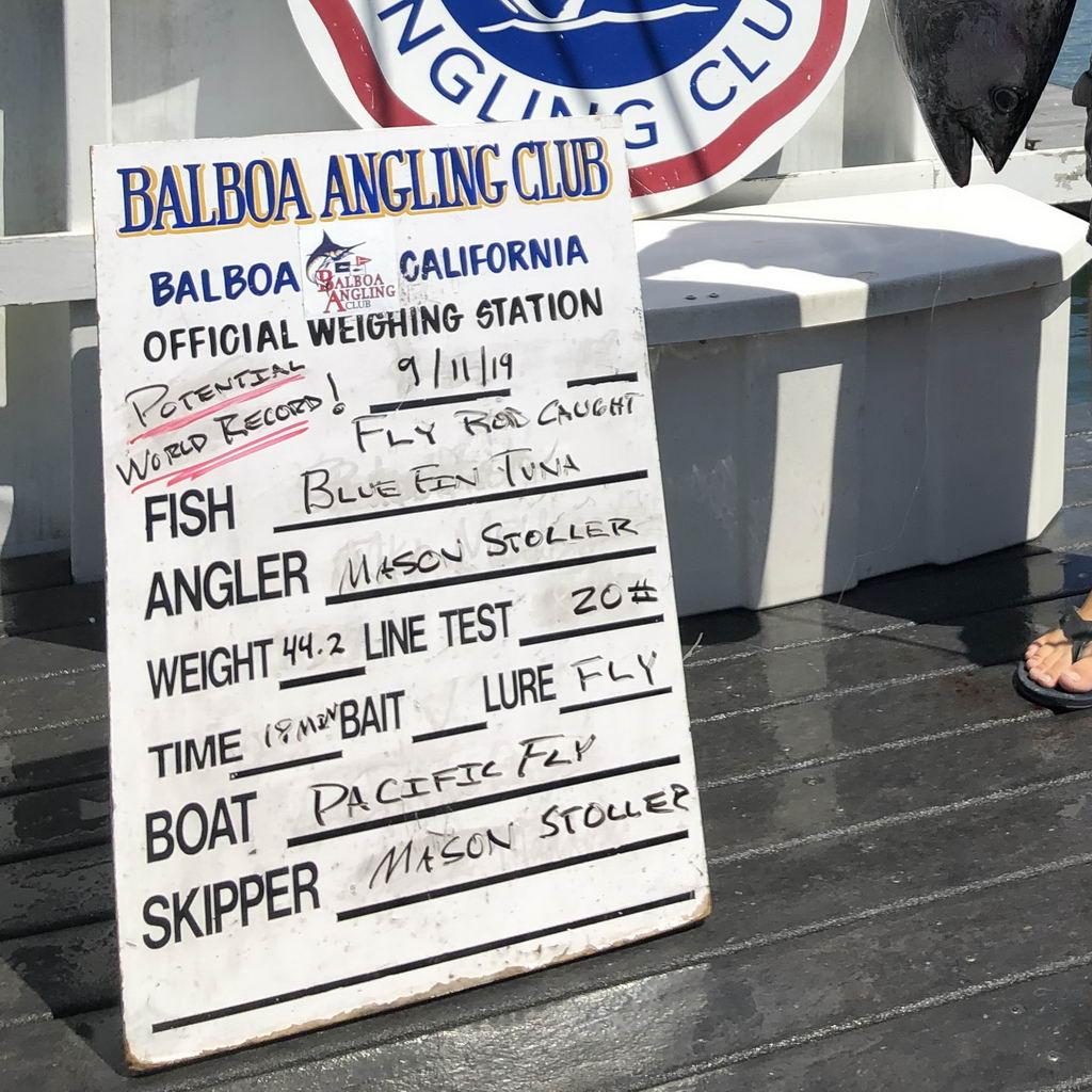 Balboa Angling Club scoreboard for Mason's potential Pacific Bluefin Tuna record