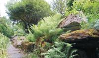 Friends of Rosshall Park & Gardens - rock garden