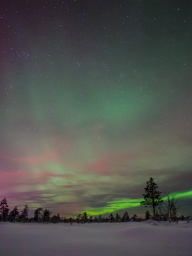 Kiruna Northern Lights Forecast