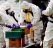Chemical Weapons Trial Opens for Bitcoin Software Engineer