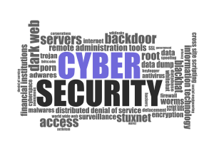 Entrepreneur's Guide To Cybersecurity, Malware And Identity Theft