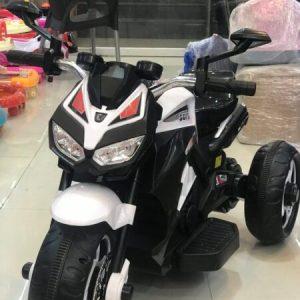Robotic 3 Wheeler Bike