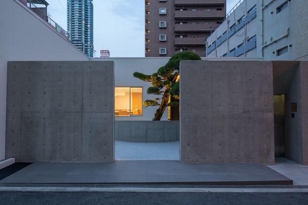 Maison avec Podocarpus de Mifune Design Studio, Osaka, Japon