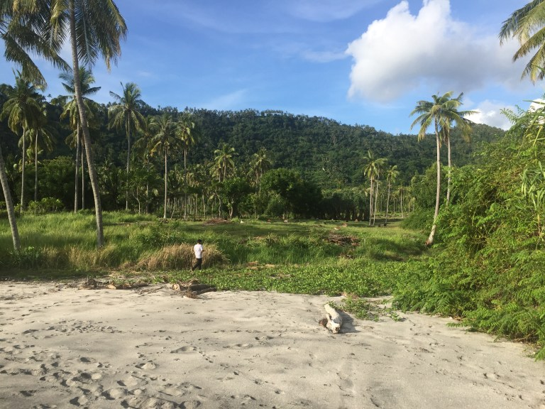 Looking inland from beach of 8 ht Beachfront Property, Lombok, Indonesia