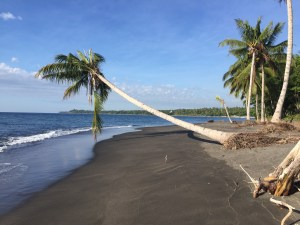 3.2 ht Black sand beachfront investment property, North Shore, Lombok 10