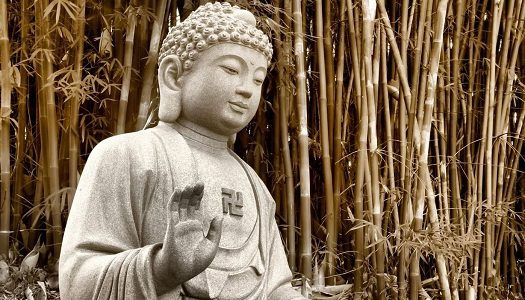 Sunday Snippet: Buddha on Mistakes