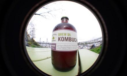 Kombucha vs. Konbucha vs. Kabocha: What's the Difference?