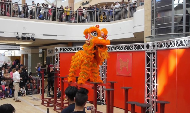 Vlog #63: Chinese New Year Lion Dance