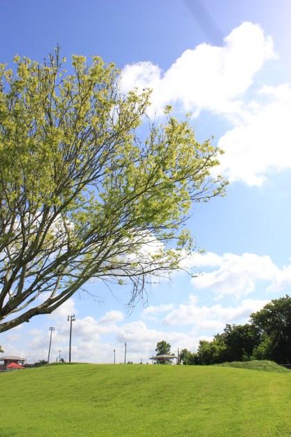 Perkins Road Community Park Baton Rouge Louisiana (80)