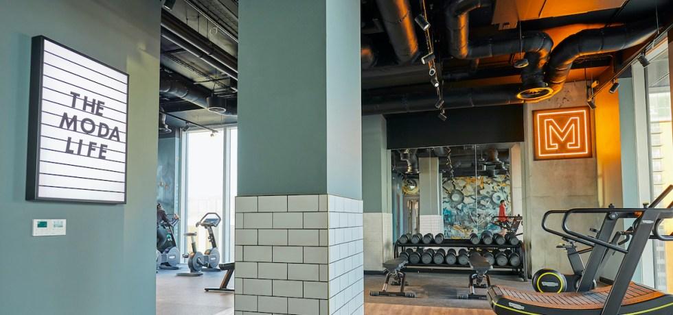 Adam Ellis art in gym - Moda Living   MYNDUP   BTR News