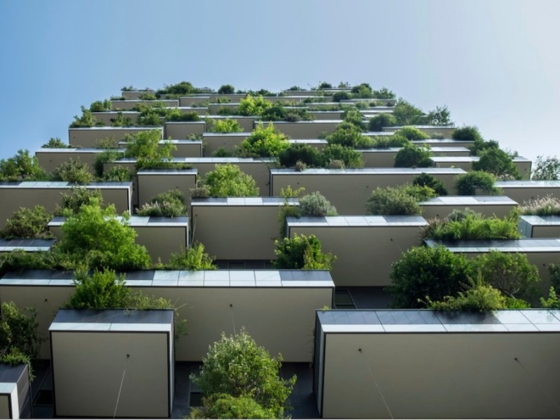 Sustainable construction - Bhangals Construction Consultants | BTR News