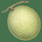 【絵文字】メロン melon
