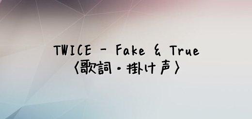 TWICE(トゥワイス) FAKE & TRUE【歌詞】