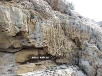 Geolodía2015 BTTersMalorca