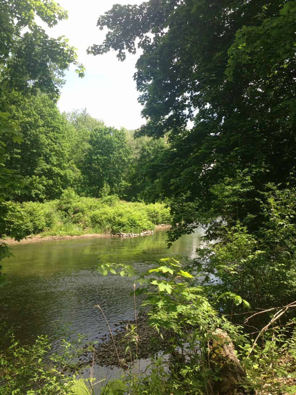 The Hoosic River runs shallow near its meeting with the Green River. Photo by Kate Abbott