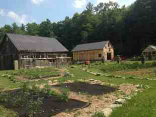 Much of what the artists cook and eat here also grows here on the property. Photo by Kate Abbott