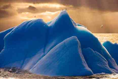 Blue Iceberg in the Scotia Sea in Antarctica. Image courtesy of Seth Resnick and Cassandra Sohn Gallery