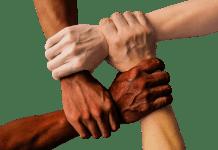 Hand United Samen Mensen Eenheid Team Teamwork Koepelvrijstelling