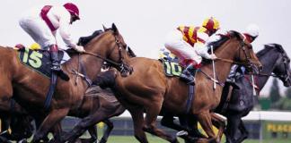 Paardenrennen Weddenschappen Wedkantoor Gokken Sportsbetting