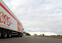 Transport Vrachtwagen Snelweg