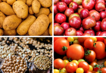 Landbouwproducten tuinbouwproducten