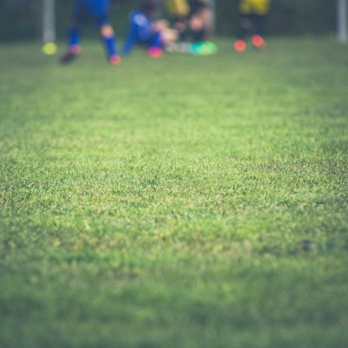 Sportveld Voetbalveld