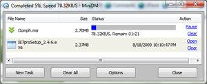 Download Manager for IE8