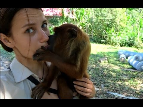Naughty Monkey Wants to French Kiss Hot Russian Girl