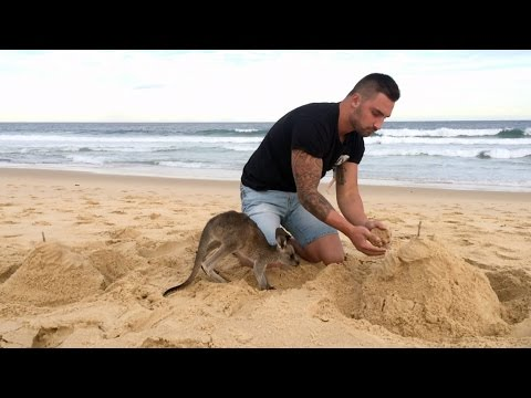 Such an adorable friendship between a man and his pet kangaroo