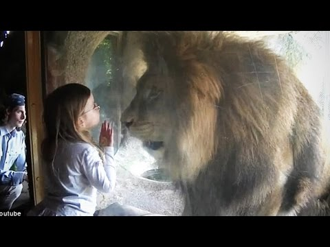 Terrifying Zoo Animal Encounters