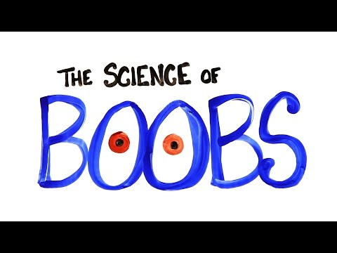 Why Do We Go Crazy Over Boobs?
