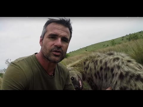 The Final Goodbye | The Lion Whisperer