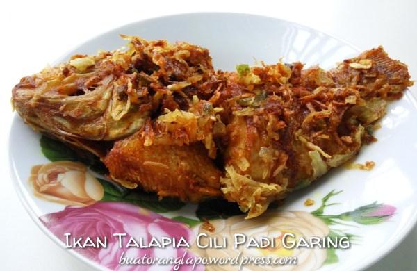 ikan talapia cili padi garing