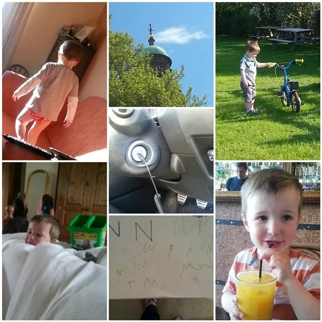 project #365 week 20 photo round up
