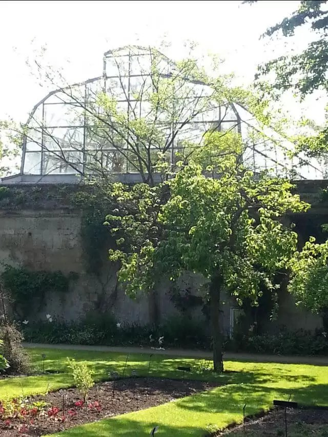 botanic-garden-glasshouse.