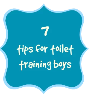 top tips for toilet training boys