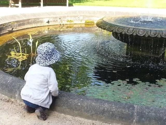botanic gardens oxford water fountain
