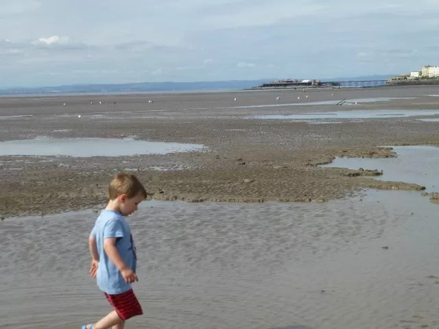 paddling in inlets on the beach