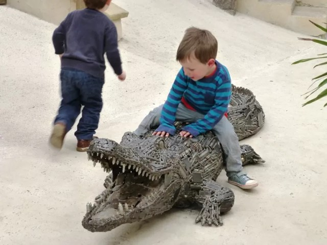 riding a crocodile