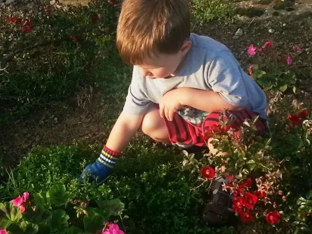 using a gardening glove