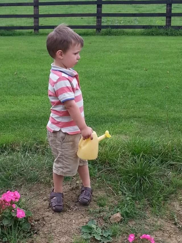 preschooler watering the garden