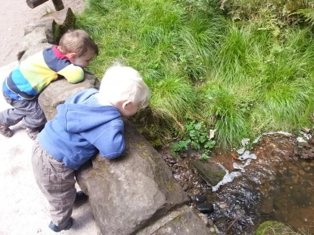 boys and streams at monkey forest