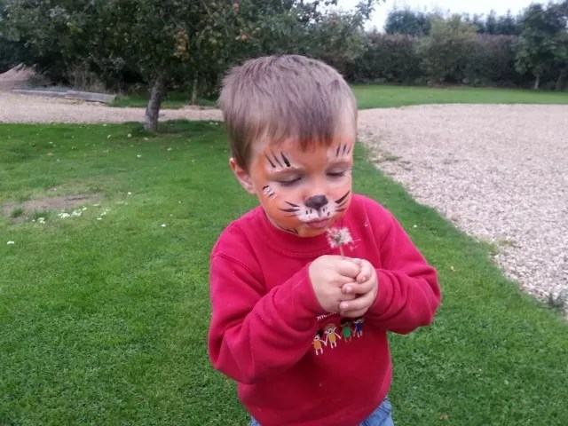 tigers face painting blowing dandelion clocks