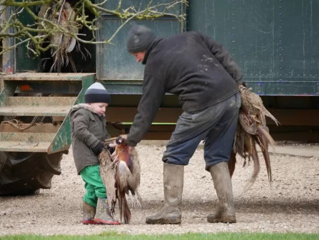 handing over the brace of pheasants - too heavy